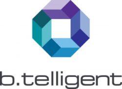 b.telligent GmbH & Co.KG
